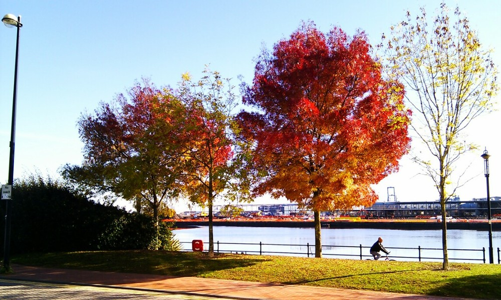 Autumn Colours in Cardiff Bay